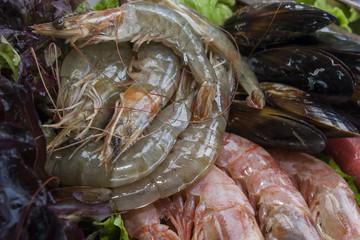 fresh shrimps on platter