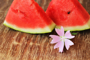 watermelon scices and flower