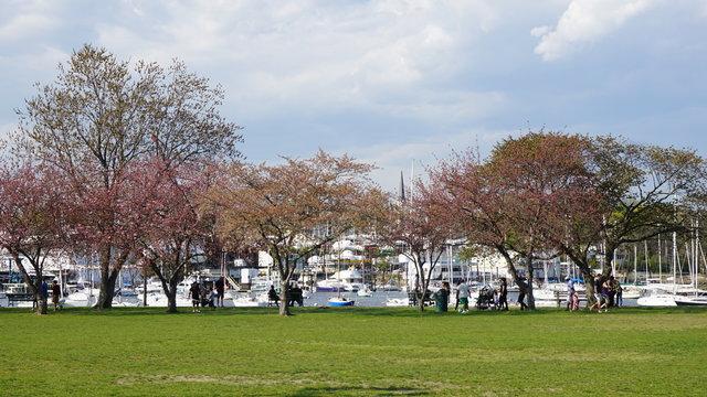 Harbor Island Park in Mamaroneck, New York
