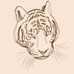 Original artwork tiger with dark stripes, isolated on white
