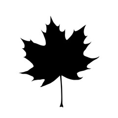 Organic and natural maple leaf flat icon for apps and websites