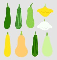 Summer squash vegetables