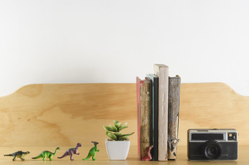 Bookshelf with toy dinosaurs, a plant, old books and vintage camera