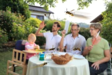 Familie beim Essen mit Wespen Plage