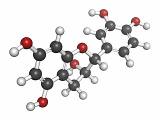 Epicatechin (l-epicatechin) chocolate flavonoid molecule.