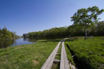 志賀高原の蓮池