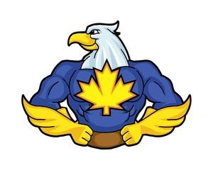 muscular hawk