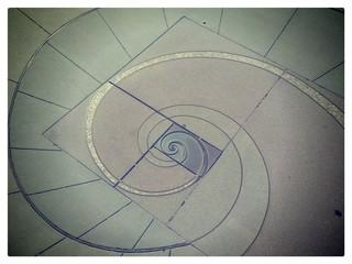 Fibonacci Spiral/ Golden Ratio