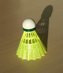 Shuttlecock with shadow on the table