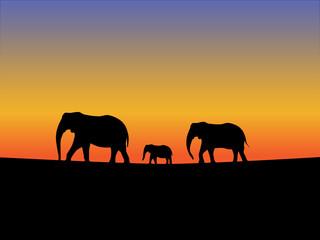 Abstract orange background elephant silhouettes