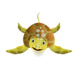 cute cartoon sea turle front view