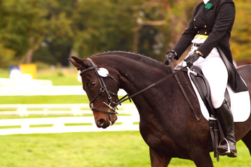 Woman competing in dressage.