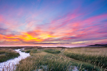 Sunset at nature park the Slufter on the wadden island Texel in Wall mural