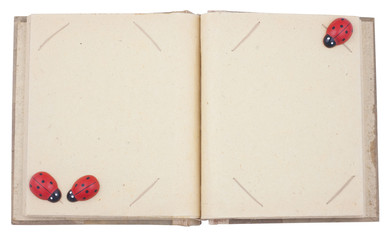 Empty photo album with lady beetle