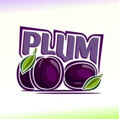 Vector illustration on the theme of plum