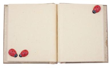 Empty photo album with lady beetle