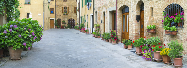 flowers on alone street in Tuscany in Italy