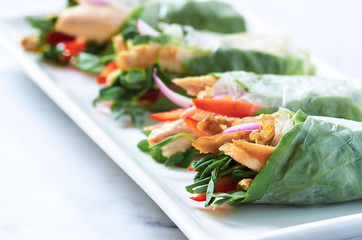 Platter of spring roll canapes
