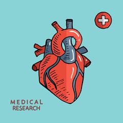 Human heart. Sketch hand drawn vector illustration.