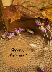 The book with maple leaves and everlasting flowers
