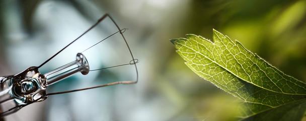 Conceptual photo - green energy