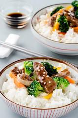 Stir-fried beef strips on white rice