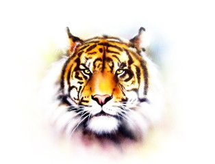 tiger head on a soft toned abstract background