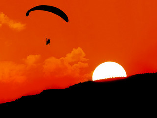Wall Murals Sky sports silhouette,paragliding at sunset