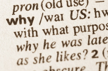 Dictionary definition of word why
