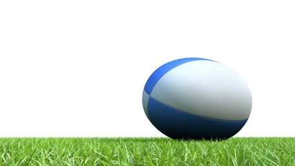 ballon rugby pelouse