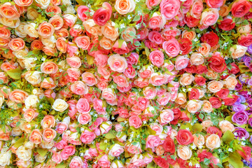 rose paper backgrounds