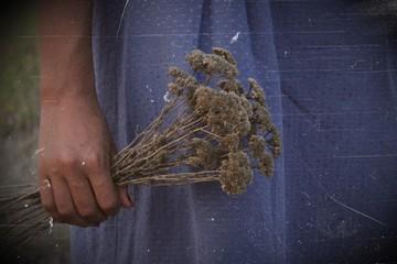 Полевые цветы в руках.