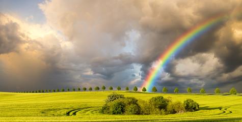 wielobarwna tęcza nad polem po przejściu wiosennej burzy