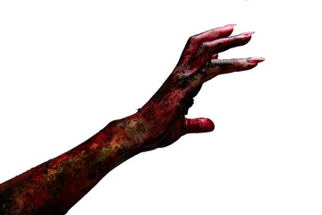 Bloody hands on a white background, zombie