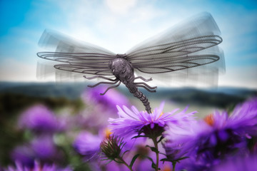 The Dragonfly Knight