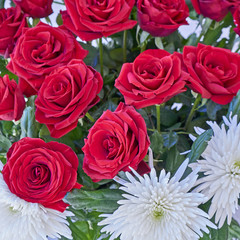 red roses and white chrysanthemums bouquet close up