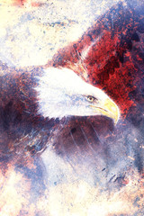 painting eagle on abstract background, wings to fly,