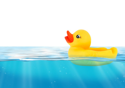 Rubber duck swimming in blue water
