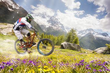Fototapete - discesa con mountain bike in ambiente alpino