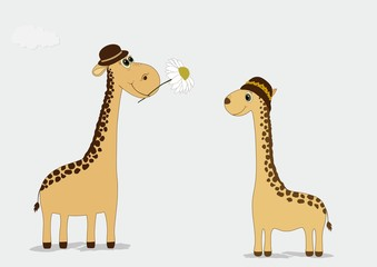 Two cute giraffes hats