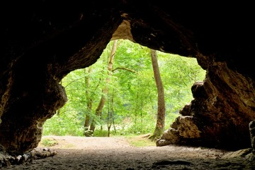 Mountain forrest,  view out from the cave.  Sandstone dome