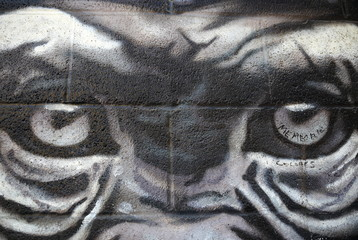 monkey eyes-graffiti-beasain