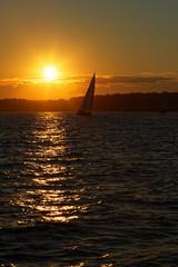 Sail boat at sunset.