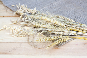 Sheaf of wheat and oat on wooden background