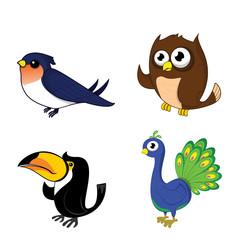 swallow , peacock ,toucan ,owl