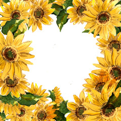 The pattern of blooming yellow flowers sunflower painted in watercolor