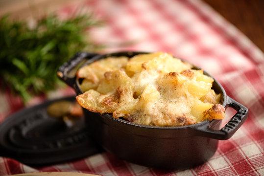 Potato gratin dauphinois