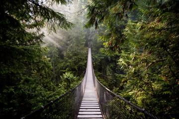 Suspension Bridge, North Vancouver, Canada