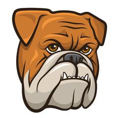 Bulldog 001