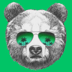 Original drawing of Bear with mirror sunglasses. Isolated on colored background